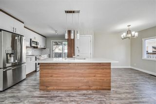 Photo 1: 4931 MARIAN Road NE in Calgary: Marlborough Detached for sale : MLS®# C4304951
