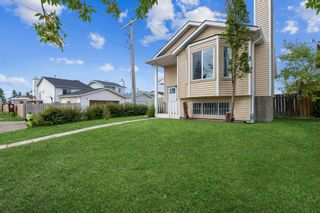 Photo 3: 23 Erin Meadows Court SE in Calgary: Erin Woods Detached for sale : MLS®# A1146245