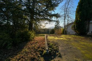 Photo 5: 4659 McQuillan Rd in : CV Courtenay East Land for sale (Comox Valley)  : MLS®# 863260