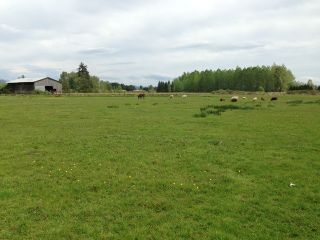 Photo 18: 6140 216TH ST in Langley: Salmon River Land for sale : MLS®# F1442362
