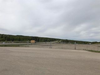 Photo 10: 13076 FIREHALL Road: Charlie Lake Land Commercial for sale (Fort St. John (Zone 60))  : MLS®# C8038634