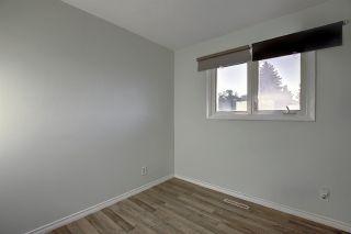 Photo 15: 9103 58 Street in Edmonton: Zone 18 House for sale : MLS®# E4239916