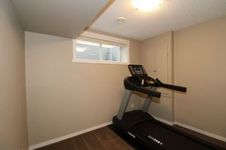 Photo 32: 3483 15A Street NW in Edmonton: Zone 30 House for sale : MLS®# E4248242