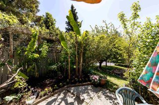 """Photo 10: 1076 LILLOOET Road in North Vancouver: Lynnmour Townhouse for sale in """"Lillooet Place"""" : MLS®# R2580744"""