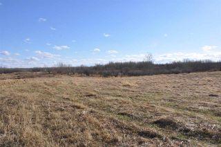 Photo 12: 10 57126 Range Road 12: Rural Barrhead County Rural Land/Vacant Lot for sale : MLS®# E4241768