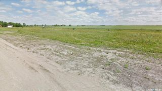 Photo 12: 125 Sellers Crescent in Davidson: Lot/Land for sale : MLS®# SK847342