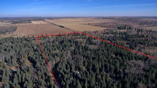 Photo 11: 20.02 Acres +/- NW of Cochrane in Rural Rocky View County: Rural Rocky View MD Land for sale : MLS®# A1065950