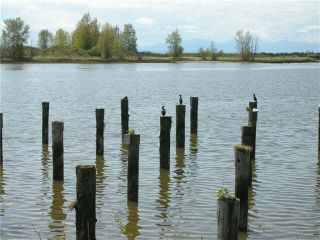 """Photo 9: 108 4500 WESTWATER Drive in Richmond: Steveston South Condo for sale in """"COPPER SKY WEST"""" : MLS®# V1129562"""