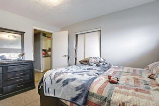 Photo 38: 142 Martindale Boulevard NE in Calgary: Martindale Detached for sale : MLS®# A1111282
