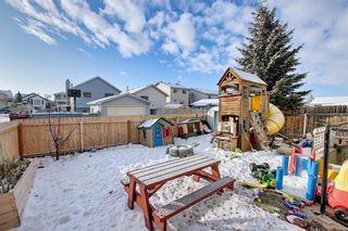 Photo 27: 163 Erin Meadow Green SE in Calgary: Erin Woods Detached for sale : MLS®# A1077161