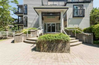 Photo 15: 205 2401 HAWTHORNE AVENUE in Port Coquitlam: Central Pt Coquitlam Condo for sale : MLS®# R2171855