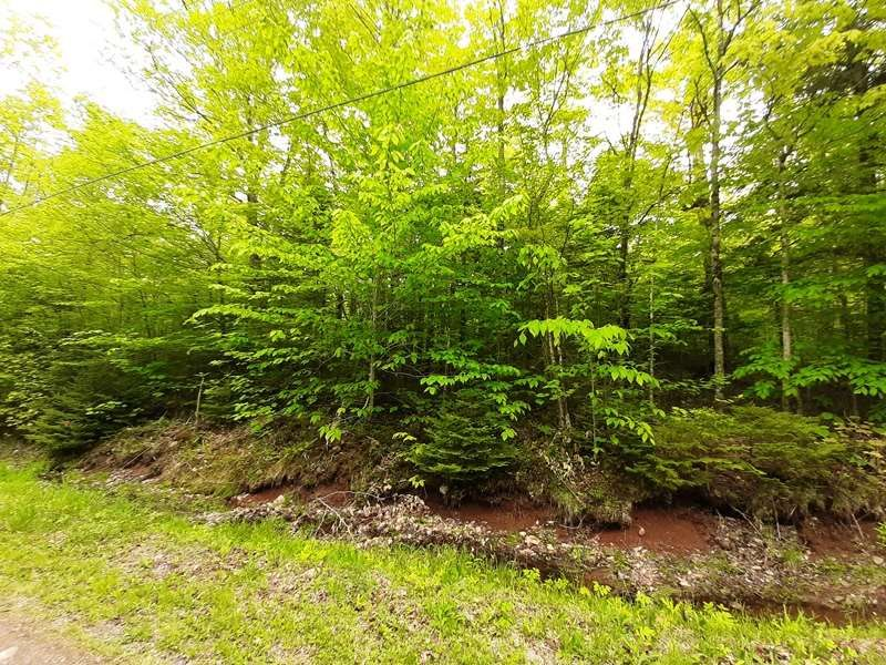 Main Photo: Lot N2 Nature Haven Road in Lake Paul: 404-Kings County Vacant Land for sale (Annapolis Valley)  : MLS®# 202009524