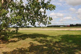 Photo 48: 56005 RR 254: Rural Sturgeon County House for sale : MLS®# E4259157