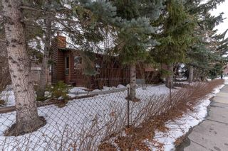 Photo 9: 540 48 Avenue SW in Calgary: Elboya Detached for sale : MLS®# A1059690
