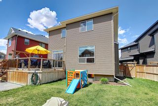 Photo 49: 128 KINNIBURGH Close: Chestermere Detached for sale : MLS®# A1107664