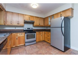 Photo 7: 1349 TERRACE Avenue in North Vancouver: Capilano NV House for sale : MLS®# R2092502