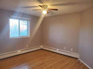 Photo 8: 404 21 Dover Point SE in Calgary: Dover Apartment for sale : MLS®# A1068387