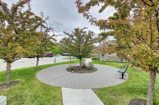 Photo 36: 1319 2395 Eversyde Avenue SW in Calgary: Evergreen Apartment for sale : MLS®# A1117927