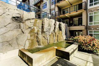 """Photo 23: 314 2495 WILSON Avenue in Port Coquitlam: Central Pt Coquitlam Condo for sale in """"Orchid Riverside"""" : MLS®# R2623164"""