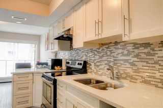 Photo 5: 305 1820 9 Street SW in Calgary: Lower Mount Royal Apartment for sale : MLS®# A1049435