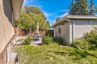 Photo 47: 8248 4A Street SW in Calgary: Kingsland Detached for sale : MLS®# A1142251