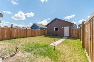 Photo 36: 22115 88 Avenue in Edmonton: Zone 58 House for sale : MLS®# E4247257