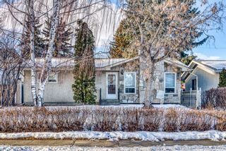 Photo 1: 345 Whitney Crescent SE in Calgary: Willow Park Detached for sale : MLS®# A1061580