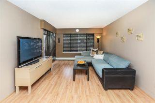 "Photo 4: 312 316 CEDAR Street in New Westminster: Sapperton Condo for sale in ""Regal Manor"" : MLS®# R2132749"