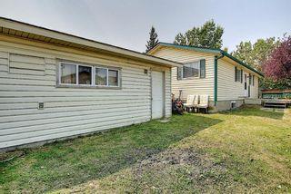 Photo 40: 180 Castledale Way NE in Calgary: Castleridge Detached for sale : MLS®# A1135509