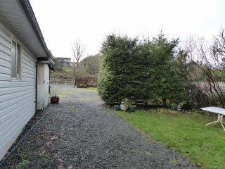 Photo 46: 800 Alder St in CAMPBELL RIVER: CR Campbell River Central House for sale (Campbell River)  : MLS®# 747357