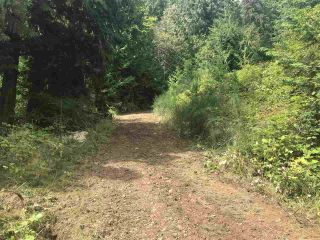 Photo 19: Lot 1 MARINE Drive in Granthams Landing: Gibsons & Area Land for sale (Sunshine Coast)  : MLS®# R2535798