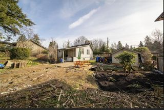 Photo 8: 3531 ALLAN Road in North Vancouver: Lynn Valley House for sale : MLS®# R2542346