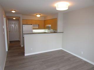 "Photo 5: 315 522 SMITH Avenue in Coquitlam: Coquitlam West Condo for sale in ""SEDONA"" : MLS®# R2148678"