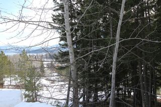 Photo 8: 33 2481 Squilax Anglemont Road in Lee Creek: Land Only for sale : MLS®# 10077079