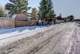 Photo 39: 22 Knowles Avenue: Okotoks Detached for sale : MLS®# A1092060
