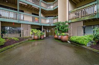 Photo 2: 418 3277 Quadra St in : SE Maplewood Condo for sale (Saanich East)  : MLS®# 863973