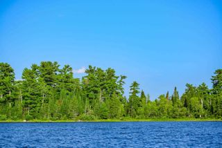 Photo 4: Lot 8 Five Point Island in South of Kenora: Vacant Land for sale : MLS®# TB212085