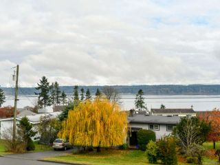 Photo 54: 156 S Murphy St in CAMPBELL RIVER: CR Campbell River Central House for sale (Campbell River)  : MLS®# 828967