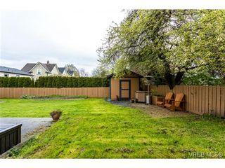 Photo 19: 1639 Pembroke St in VICTORIA: Vi Fernwood House for sale (Victoria)  : MLS®# 726428