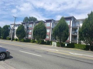 """Photo 1: 214 2943 NELSON Place in Abbotsford: Central Abbotsford Condo for sale in """"EDGEBROOK"""" : MLS®# R2190827"""