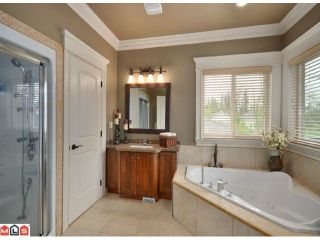"""Photo 9: 23157 80TH Avenue in Langley: Fort Langley House for sale in """"CASTLE HILL/FOREST KNOLLS"""" : MLS®# F1014538"""
