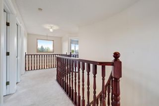 Photo 14: 36 Springshire Place in Rural Rocky View County: Rural Rocky View MD Detached for sale : MLS®# A1125747
