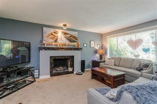 Photo 3: 3991 208 Street in Langley: Brookswood Langley House for sale : MLS®# R2498245
