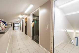 Photo 19: 10301 Highway 201 in Meadowvale: 400-Annapolis County Commercial  (Annapolis Valley)  : MLS®# 202106043