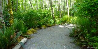 Photo 10: 3425 Robson Pl in VICTORIA: Co Triangle Land for sale (Colwood)  : MLS®# 702859