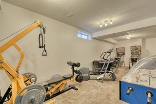 Photo 28: 5 CRANWELL Crescent SE in Calgary: Cranston Detached for sale : MLS®# A1018519