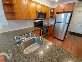 Photo 4: 205 1514 Church Ave in : SE Cedar Hill Condo for sale (Saanich East)  : MLS®# 874931