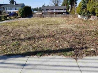 Photo 11: 12135 203 STREET in Maple Ridge: Northwest Maple Ridge Land for sale : MLS®# R2350746