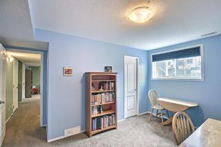 Photo 40: 73 Canals Circle SW: Airdrie Detached for sale : MLS®# A1104916