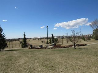 Photo 49: 231 TORY Crescent in Edmonton: Zone 14 House for sale : MLS®# E4242192